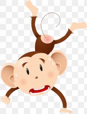 Monkey - Ape Gorilla Chimpanzee Monkey Primate PNG