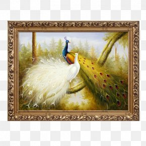 Peacock Decorative Painting - Oil Painting Picture Frame Mural PNG