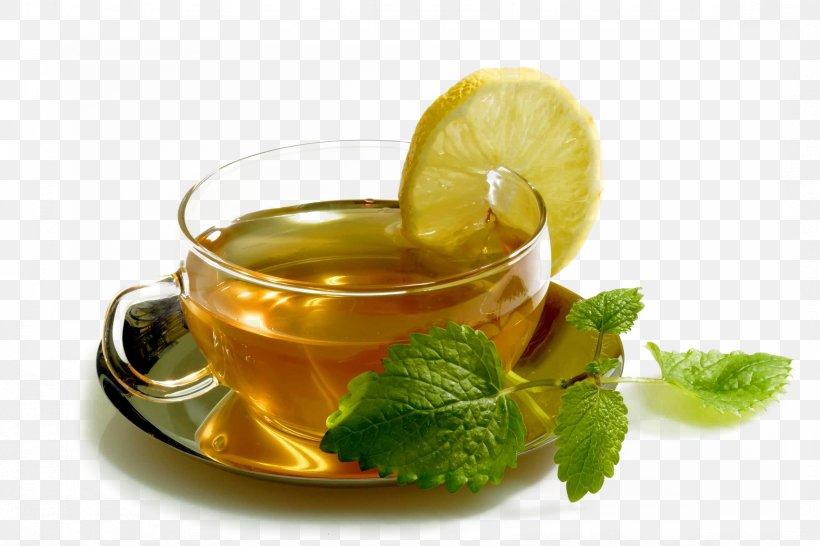 Maghrebi Mint Tea Spearmint Drink Food, PNG, 2356x1571px, Tea, Camellia Sinensis, Cocktail Garnish, Cup, Drink Download Free