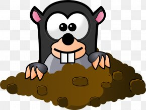 Animated Owl Pictures - Mole Day Free Content Clip Art PNG