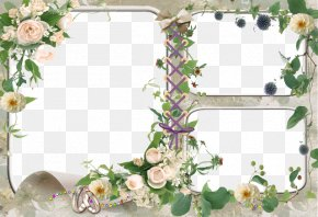 Photo Frame Photoshop Background - Picture Frames Desktop Wallpaper Template PNG