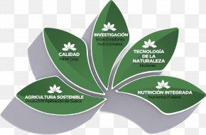 Leaf - Leaf Desktop Wallpaper Plant Stem PNG