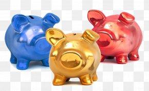 Color Piggy Piggy Bank - Piggy Bank Saving Money Domestic Pig PNG