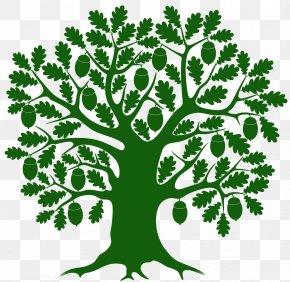 Creative Mouse Tree - Little Acorn Preschool And Kindergarten Pre-school Classroom PNG