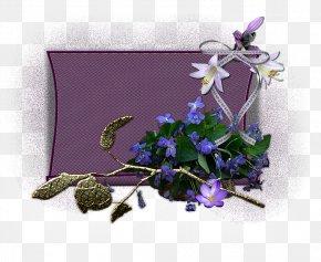 Violet - Floral Design Violet Cut Flowers Lavender PNG