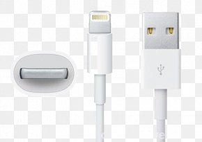 IPhone Data Cable - IPhone 5s IPad Mini Electrical Cable Battery Charger PNG