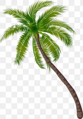 Beach Coconut Tree Pattern - Coconut Tree PNG