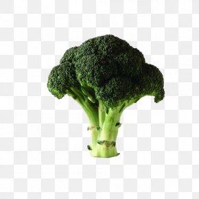 Broccoli - Chinese Broccoli Cauliflower Vegetable Potato PNG