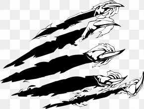 Vector Painted Claws - Claw Euclidean Vector Download Clip Art PNG