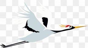Crane In Flight - Crane Flight Bird PNG