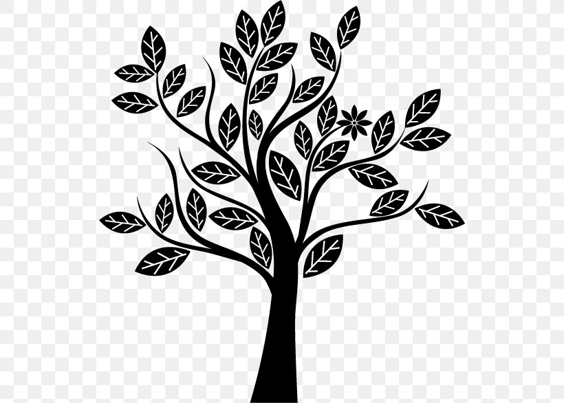 Tree Silhouette, PNG, 532x586px, Tree, Black, Black And White, Branch, Color Download Free