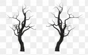 Dead Tree - Tree Branch Snag PNG