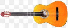 Acoustic Guitar - Acoustic Guitar Ukulele Tiple Cuatro Acoustic-electric Guitar PNG