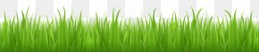 Grass Image Green Picture - Lawn Grass Adobe Illustrator PNG