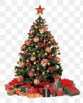 Christmas Home Clipart - Christmas Tree Christmas Decoration Christmas Ornament Gift PNG