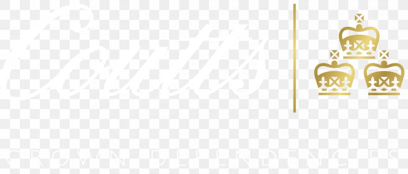 Brand Product Design Rectangle Font, PNG, 2384x1022px, Brand, Body Jewellery, Body Jewelry, Jewellery, Rectangle Download Free
