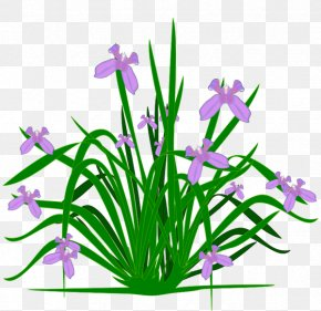 A Plant Cliparts - Plant Free Content Clip Art PNG