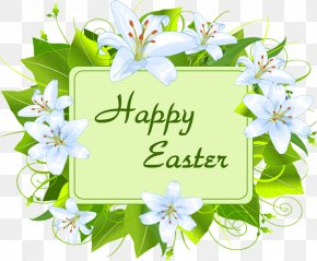 Easter Sunday Images - Easter Bunny Greeting Card Wish PNG