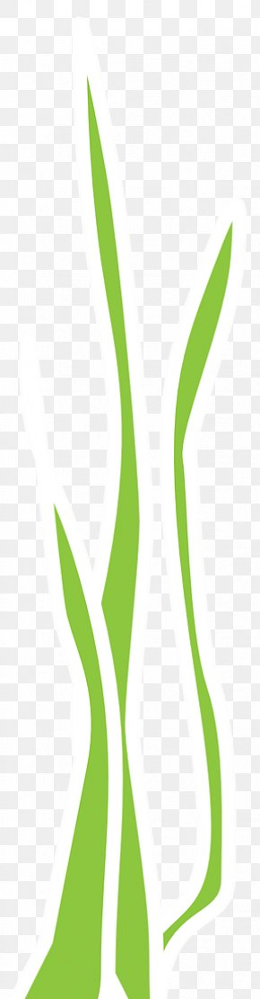 Nori Seaweed - Leaf Green Grasses Plant Stem Clip Art PNG