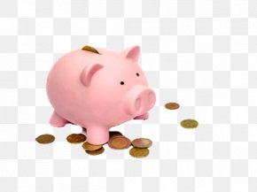 Free Pink Pig Piggy Bank To Pull The Material - Piggy Bank Coin Investment Saving PNG