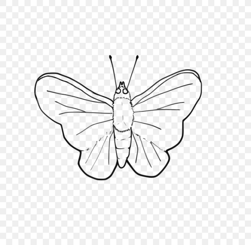 Butterfly Line Art Black And White Clip Art, PNG, 800x800px, Butterfly, Area, Art, Artwork, Black And White Download Free
