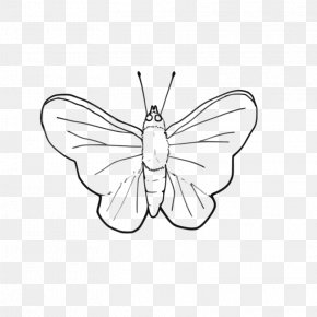 Butterfly Pictures Black And White - Butterfly Line Art Black And White Clip Art PNG