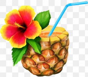 A Pineapple - Hawaiian Aloha Free Content Clip Art PNG