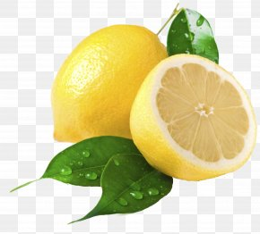 Lemon - Lemon Juice Clip Art PNG