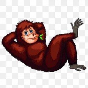 Orangutan - Orangutan Animal Illustrations Stock Photography Clip Art PNG