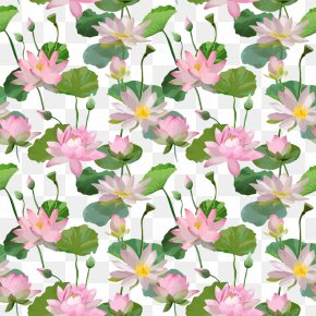 Pink Floral Background - Pink Nelumbo Nucifera PNG