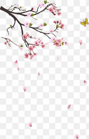 Cherry Tree Branches - Branch Tree PNG