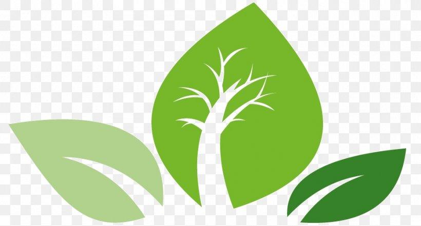Leaf Logo Green Plant Stem Font, PNG, 937x505px, Leaf, Grass, Green, Logo, Plant Download Free