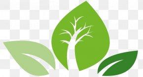 Leaf - Leaf Logo Green Plant Stem Font PNG