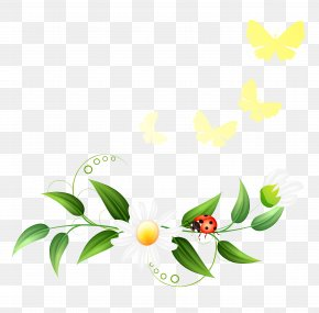 Spring Decoration Clipart - Wedding Invitation Clip Art PNG