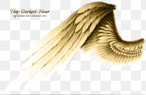 Wing - Angel Wing Angel Wing PNG