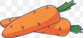 Personal Protective Equipment Footwear - Vegetables Cartoon PNG