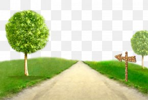 Country Road - Wallpaper PNG