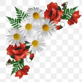 Flower - Picture Frames Borders And Frames Flower Photo Frame Image Photograph PNG