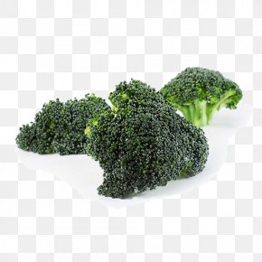 Organic Vegetable Broccoli - Broccoli Vegetable Kale PNG