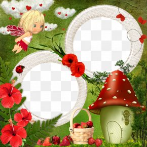 Beautiful Mushroom Picture Frame Material - Picture Frames Drawing Window Photography PNG