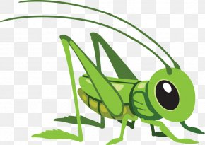 Hand-painted Grasshopper - Grasshopper Cartoon Royalty-free Clip Art PNG