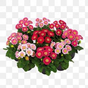 Lilac Flower - Cut Flowers Floral Design Floristry Artificial Flower PNG