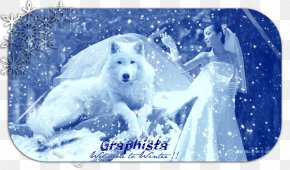 Polar Bear - West Highland White Terrier Arctic Polar Bear Blue PNG