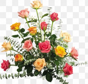 Champagne Rose - Party Happy Birthday To You Grandmothers Day New Year PNG