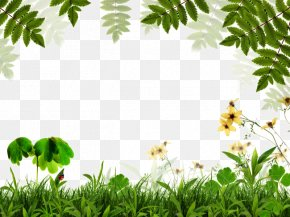 Spring Green Background Border - Green Leaf Euclidean Vector PNG
