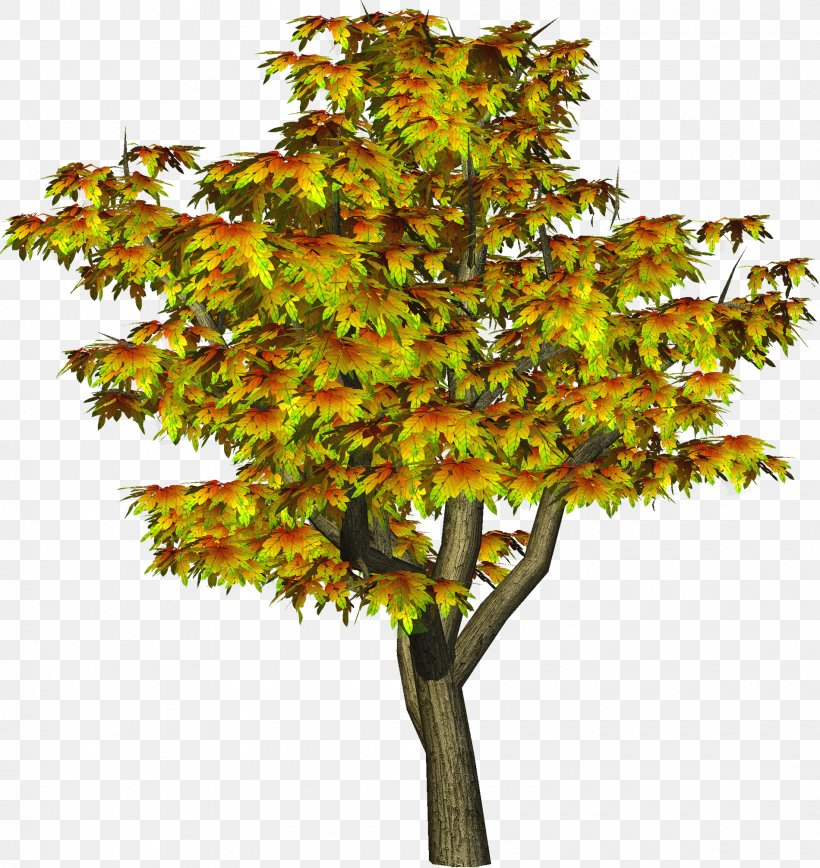 Tree Autumn Clip Art, PNG, 1900x2013px, Tree, Autumn, Branch, Deciduous, Editing Download Free