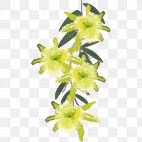 Hand Painted Plants - Cut Flowers Euclidean Vector Illustration PNG