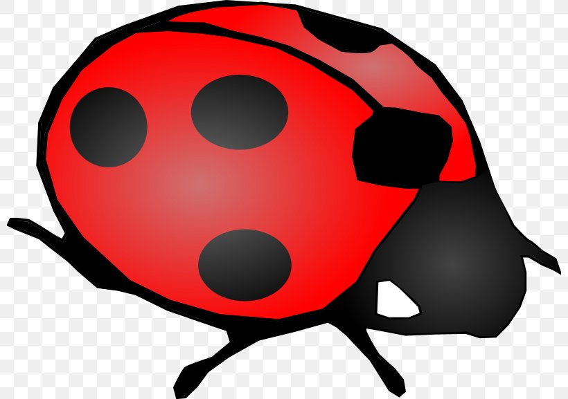 Beetle Ladybird Clip Art, PNG, 800x577px, Beetle, Clip Art, Drawing, Elytron, Insect Download Free