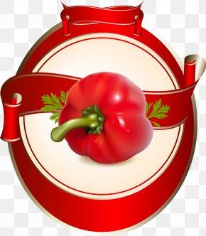 Tomato - Vegetable Tomato Sauce PNG