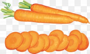 Carrot Image - Carrot Vegetable Clip Art PNG